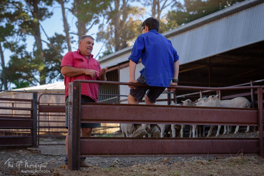 Rural eduction: counting sheep