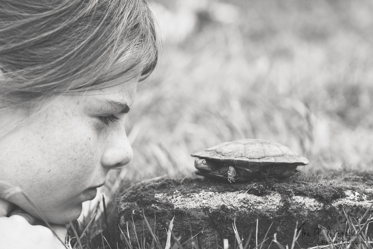 Girl and a turtle