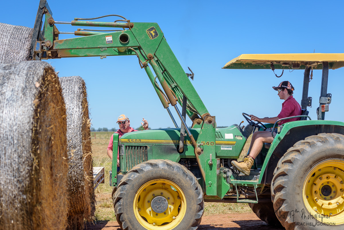 Hay, tractor, loading, people