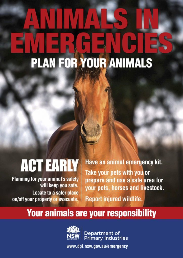 Animals in Emergencies Horse