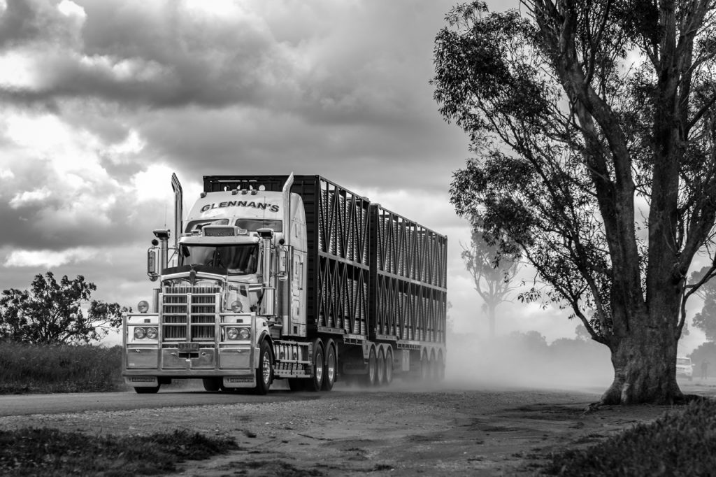 Cattle truck Australia